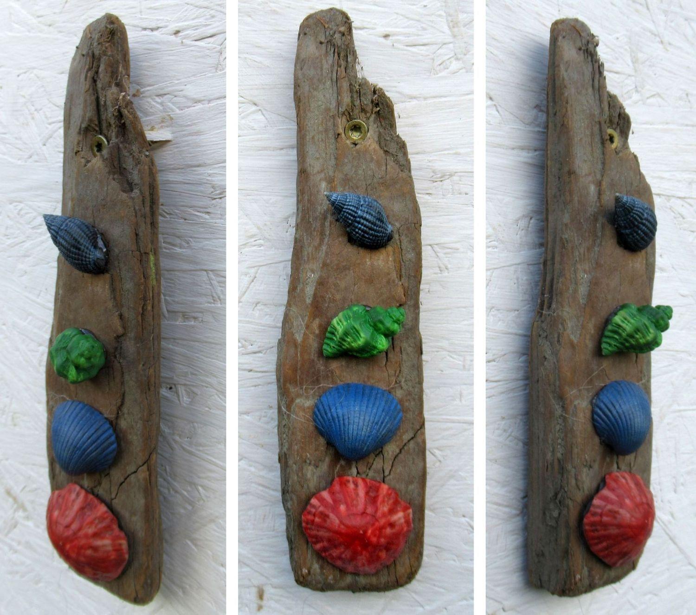 Verschiedene bunte Muscheln zum Basteln mit Treibholz als Dekoration für die Wand.