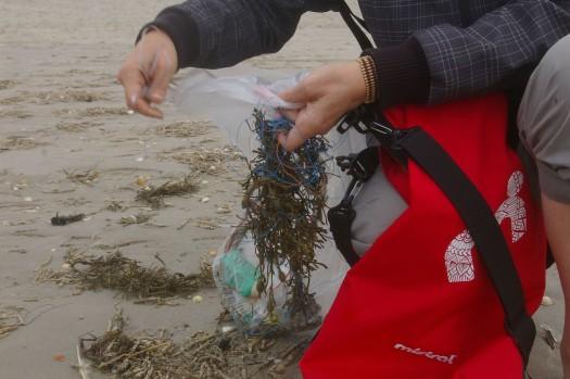 Plastikmüll sortieren